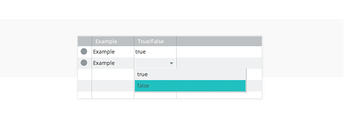 data-driven-prototyping-create-data-master-true-false-fields