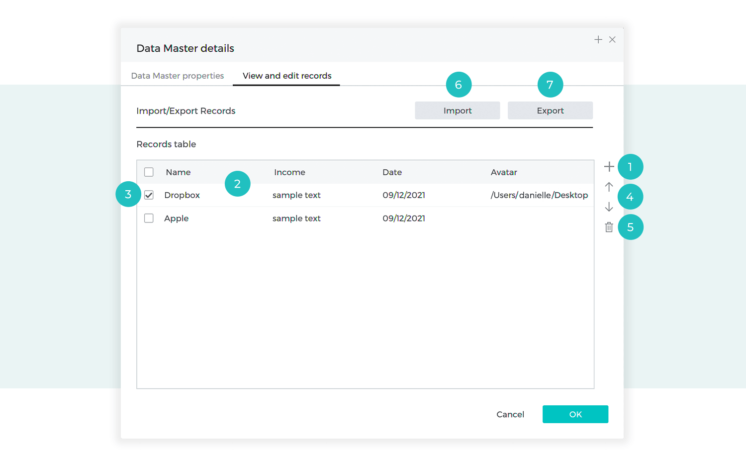 View and edit records of data master defined
