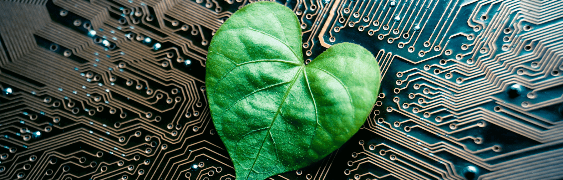 green-ux-ui-designer-header