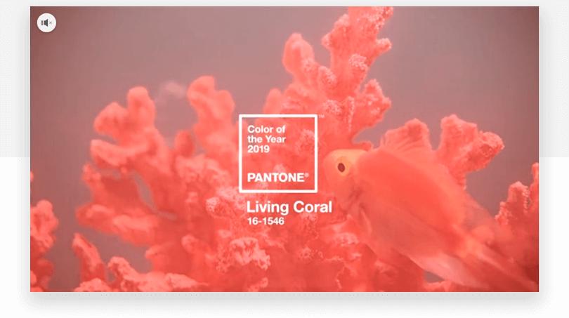 Pantone's living coral - web design trends 2019 - Justinmind